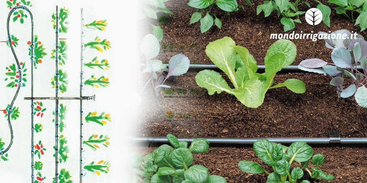 Progettare l'impianto di irrigazione a goccia per l'orto