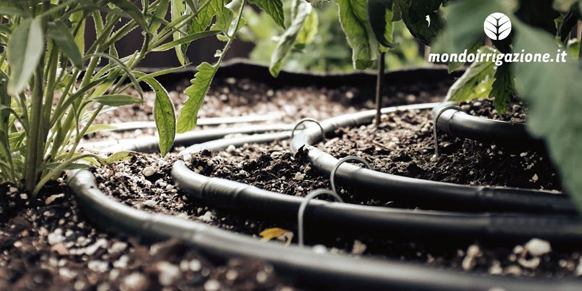 Ala Gocciolante Per Irrigazione Applicazioni Posa Pulizia