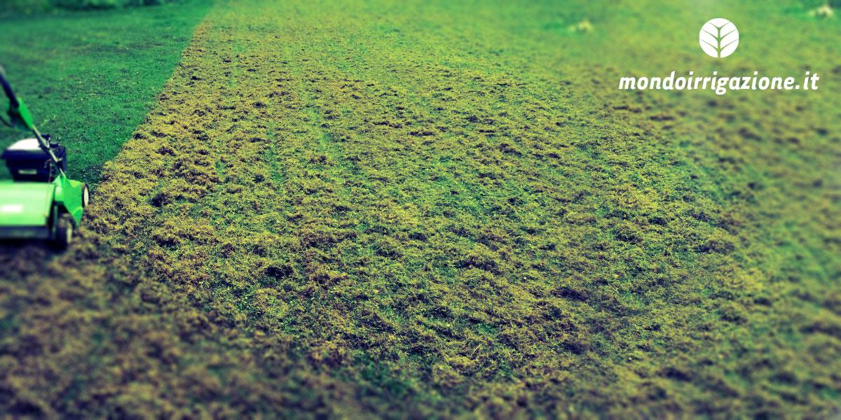 Il blog sull 39 irrigazione guide su centraline irrigatori for Quando concimare il prato