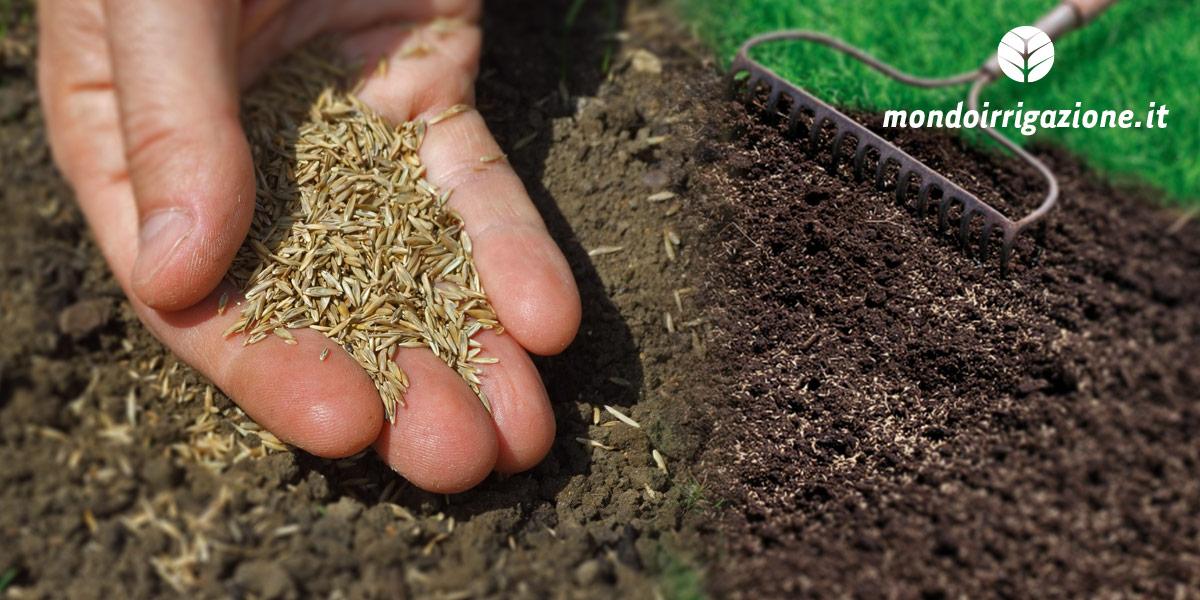 Prato: come preparare il terreno e seminare