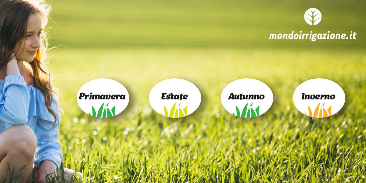 Quando seminare il prato inglese, primavera, estate, autunno o inverno?