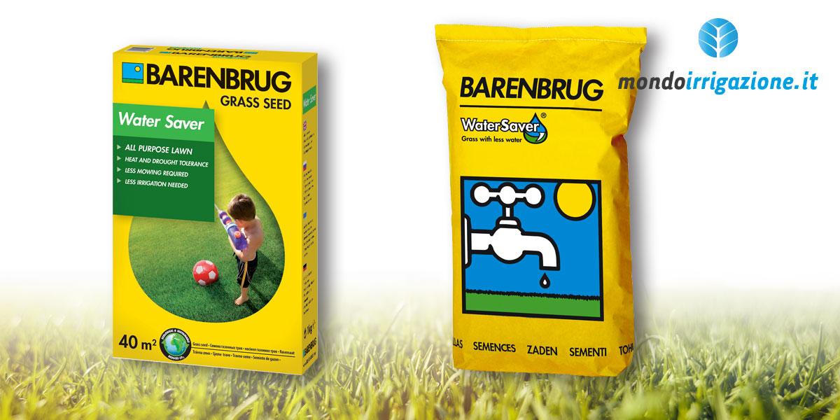 Semi, sementi e miscugli a base di Festuca Arundinacea - Barenbrug Water Saver